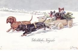 Teckel  Dackel  Dachshund  Cat Chat Katzen K.Feiertag  Chien  Hund  Cane  Old Postcard BKWI  2670- 5 Cpa. 1922 - Chiens