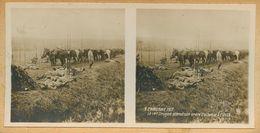 146 - GUERRE 1914-1918 - AISNE - CRAONNE - Le 14è Dragon Attend Son Ordre D'attaque à CUSSY - Craonne