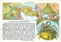 CHROMO LES CONTES DE PERRAULT LA BELLE AU BOIS DORMANT - Sonstige