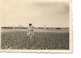 DP14/  OORDEREN BLOEMBOLLENVELDEN 1938 - Places