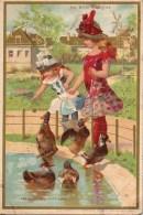 Chromo AU BON MARCHE :Les Canards Exotiques - Au Bon Marché