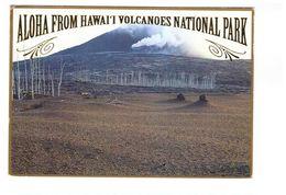USA Hawai Volcanoes National Park Volcan Volcans Aloha From Hawai - Hilo