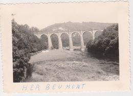 26485 Huit 8 Photo -Belgique Belgie Herbeumont - Années 1950 - Camping Femme Pont Meuse Velo - Lieux