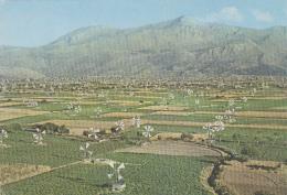 Architecture - Moulin à Vent - Crète - Eolienne Pour L'irrigation Plateau De Lassithi - Agriculture Ecologie - Châteaux D'eau & éoliennes