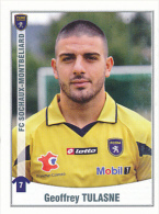 Panini, Foot 2011, N° 462, GEOFFREY TULASNE, FC Sochaux-Montbéliard - Panini