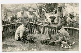 Haiti - Combat De Coqs - Cartes Postales