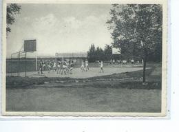 Soignies Collège St Vincent Terrains De Sports ( Basket Ball ) - Soignies