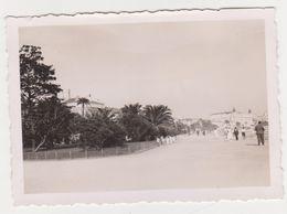 26502 Trois 3 Photo Cannes France  Croisette - Vers 1950 - - Lieux