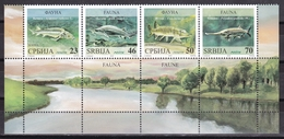 Serbia 2018 Fauna Animals Freshwater Fish Fishes Sterlet Sturgeon Beluga Pike The American Paddlefish Set + Vignette MNH - Serbia