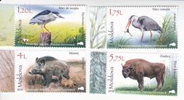 "2018 , Moldova , Moldavie , Nature Reserve ""Padurea Domneasca "" , Birds , Animals , Forest , Set 4 V. MNH - Moldova"