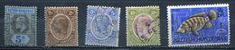 British Honduras. Lot Of  5 Old Stamps - British Honduras (...-1970)