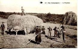 N°256 A -cpa Nos Campagnes -la Fenaison- - Cultures