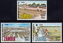 Zm0244 ZAMBIA 1975, SG 244-6 International Commission On Irrigation And Drainage,  MNH - Zambia (1965-...)