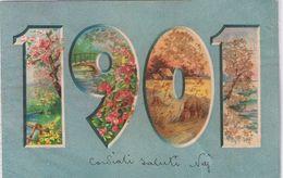 Anno 1901 - Viaggiata - Granella In Rilievo - New Year