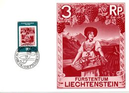 CP Maximum Du 08.09.1980 -vue Du Vignoble -VADUZ  - LIECHTENSTEIN - Vins & Alcools
