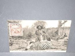 CONGO BELGE - Entier Postal ( Chasse Au Zèbre ) De Boendé Pour La France En 1924 - L 15898 - Entiers Postaux