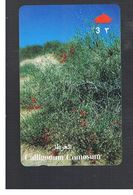 OMAN - MPTT -  PLANTS: CALLIGONUM COMOSUM - USED  -  RIF.  10344 - Oman