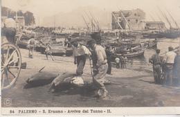Palermo - S. Erasmo - Arrivo Del Tonno - II - NP.G. N° 84 - Palermo