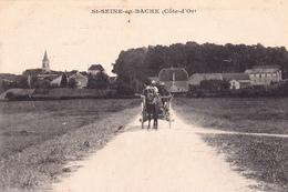 SAINT SEINE EN BACHE - France