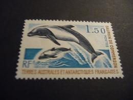 TIMBRE    TAAF   N  65      COTE  7,80  EUROS    1977   NEUF  LUXE** - Terres Australes Et Antarctiques Françaises (TAAF)