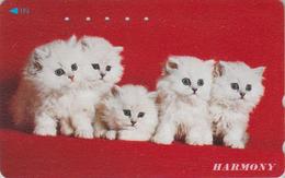 Télécarte Japon / 110-011 - Animal - CHAT Chats - CAT Cats Japan Phonecard - KATZE - 4113 - Cats