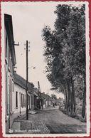 St. Amands Aan De Schelde - Dam Sint St - Sint-Amands