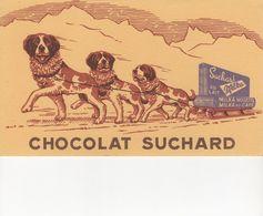 Buvard SUCHARD - Cocoa & Chocolat