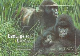 2007 Guernsey Gorillas  Souvenir Sheet MNH @ BELOW FACE VALUE - Gorilles