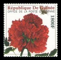 Guinea 2009 Mih. 6490 Flora. Flowers. Peony MNH ** - Guinea (1958-...)