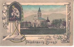 1839    AK   SLOVENIJA    BREZJE - Slovenia