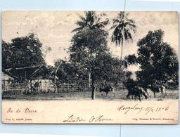 ASIE - INDONESIE - Indonésie