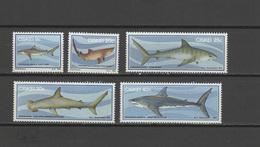 Ciskei 1983 Michel 38-42 Sharks Set Of 5 MNH - Ciskei