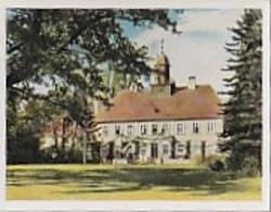 SB00558 Auf Deutscher Scholle - Bild Nr. 258 Trakehnen - Cigarettes