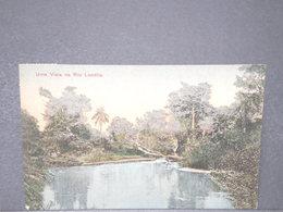 ANGOLA - Carte Postale - Uma Vista No Rio Locolla - L 15916 - Angola