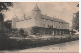 Cpa.74.Coudrée.Château Bartholoni. - Autres Communes