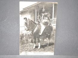 DJIBOUTI - Carte Postale - Guerrier Abyssin - L 15960 - Gibuti