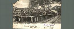 MISSING CORNER SEE SCAN   BANANA PLATFORM SAN PEDRO HONDURAS SS SABA 1904 - Honduras