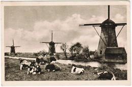 Hollandse Molenserie, Molen, Windmill, Moulin (pk44162) - Landbouw