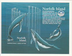 1995 Norfolk Island Whates Miniature Sheet Of   MNH - Baleines