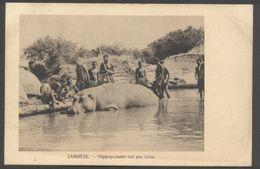 Zambèze - Hippopotame Tué Par Litia - Edit. Missions Evangéliques Paris - Cliché Litia Fils De Lewanika - Voir 2 Scans - Zimbabwe