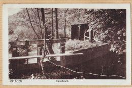 All145 Peu Commun OPLADEN Leverkusen Rennbaum Retenue Moulin à Eau 1920s  MAX BIEGEL  Elberfeld - Leverkusen