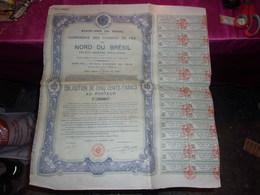 Compagnie Des Chemins De Fer Du NORD DU BRESIL (états Unis Du Bresil) 1906 - Shareholdings