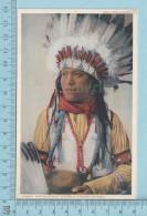 Apache -  H-2244 Buffalo Calf Jicarilla Apache, Arizona, By Fred Harvey - Indiens De L'Amerique Du Nord