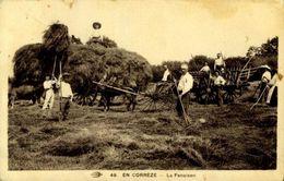 19 CORREZE LA FENAISON / A 144 - Francia