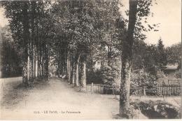 *** 88  *** LE TAYE La Promenade écrite TTB - Francia