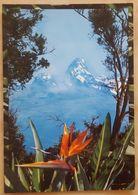 KENYA - Mount Kenya Nv - Kenia