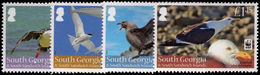 South Georgia 2012 Seabirds Unmounted Mint. - South Georgia