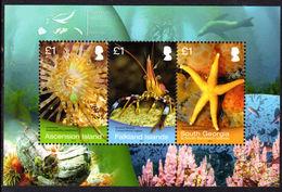 South Georgia 2013 Shallow Marine Surveys Souvenir Sheet Unmounted Mint. - South Georgia