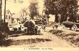 Elsenborn - Vue Du Village (animée, Attelage Boeufs, Marco) - Elsenborn (camp)