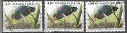 8Nz-984: 3x  N° 3398 : Zwarte Ooievaar - 1985-.. Birds (Buzin)